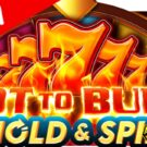 Hot to Burn Hold and Spin Slot