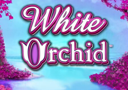 White Orchid Slot